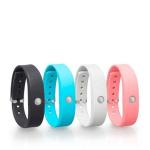 TOSHIBA 加入穿戴裝置市場,推出  WERAM1100 彩色智慧健身手環