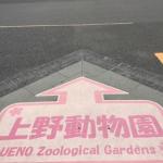 好開心! 日本上野動物園內的動物吹 Dyson 增流扇