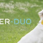 [科技新視野] 虛擬牽繩 Findster Duo 讓毛小孩自由奔馳不怕走失