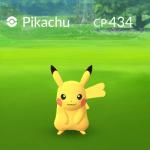 Pokemon Go 導入寶可夢性別系統,雌性皮卡丘叫做....Ricachu