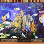 Panasonic 49 吋 4K電視(TH-49FX600W),功能齊全,最超值的平價首選