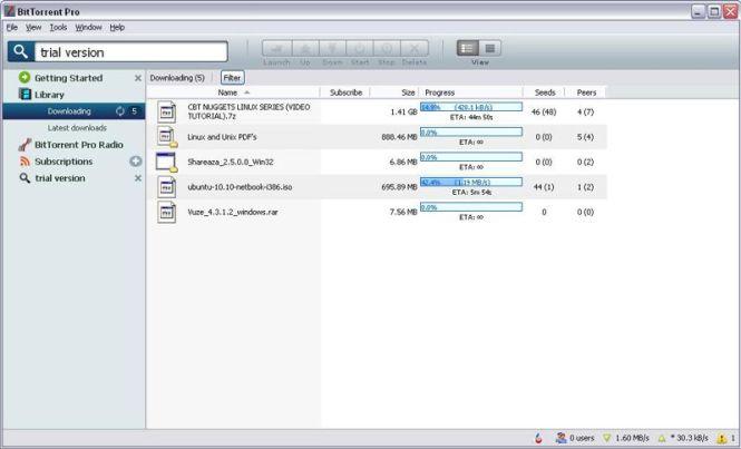 BitTorrent Pro windows