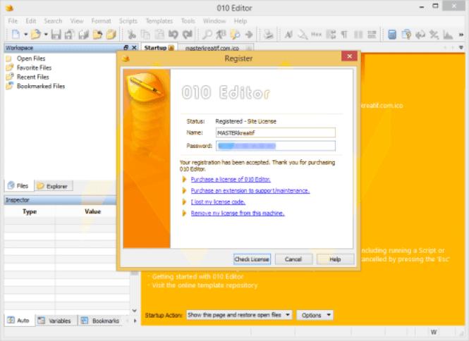SweetScape 010 Editor windows