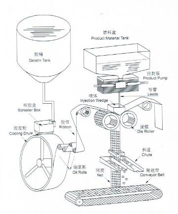 Laboratory Pharmaceutical Machinery For Softgel