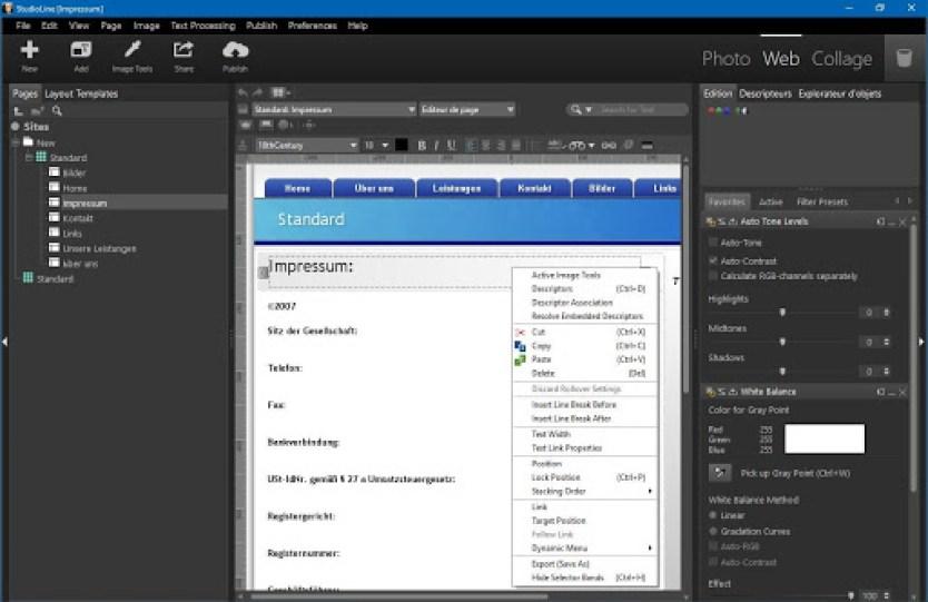 StudioLine Web Designer widnows