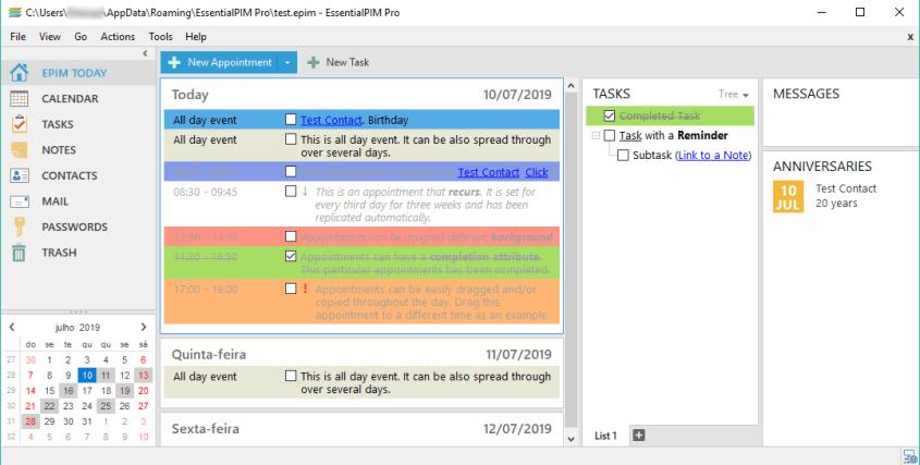 EssentialPIM Pro Business windows