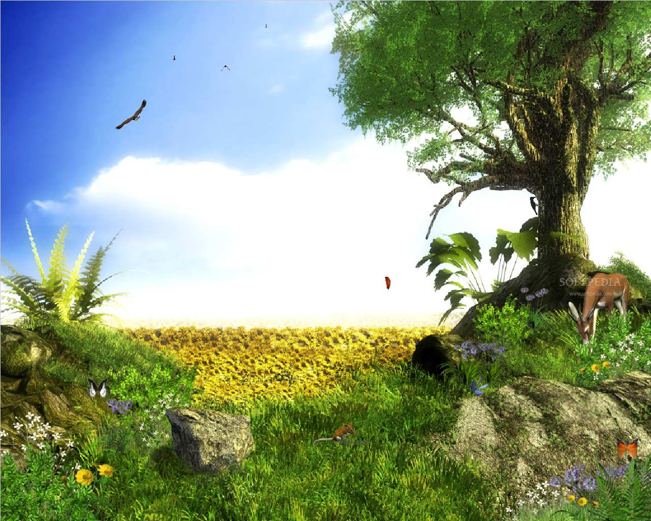 Animated Wallpapers Animation Backgrounds