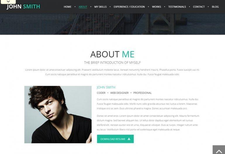 Online CV Theme