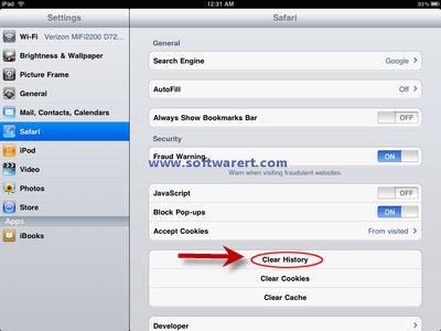 How to clear Safari history on iPad?