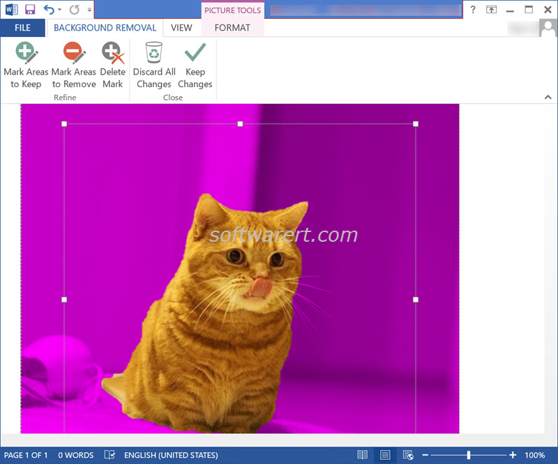 picture background removal microsoft word for windows