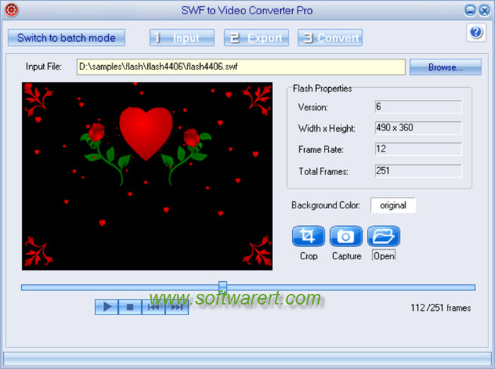 flash swf to video converter pro
