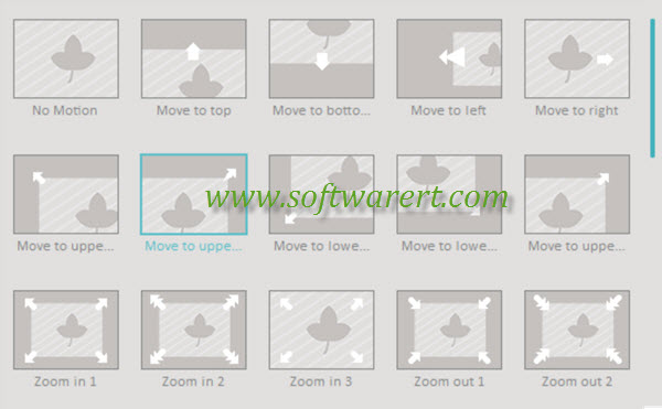 picture video motion