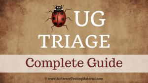 Defect Triage Bug Triage