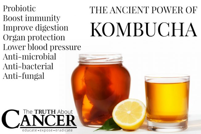 ttac-kombucha-tea-graphic