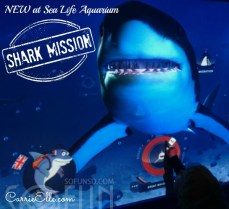 Shark-Mission-Sea-Life-Aquarium
