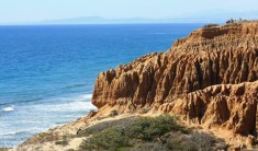 Viewpoint-in-Torrey-Pines-State-Natural-Reserve-whale-watching-spot-bryce-Large-1000x586