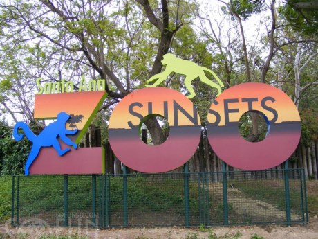Sunsets-at-the-Zoo-Santa-Ana