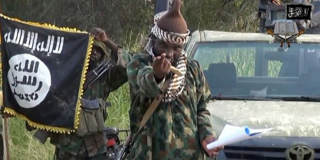 Cameroon Says It Has Killed 143 Boko Haram Militants