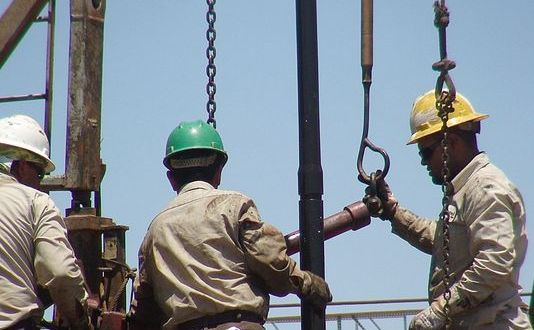 Oil prices affect students' career plans