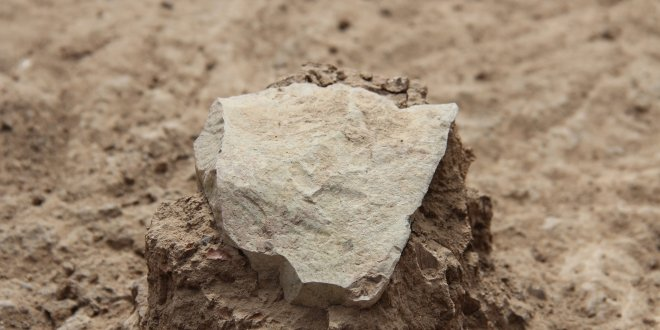 Stone Tools From Kenya Are Oldest Yet Discovered