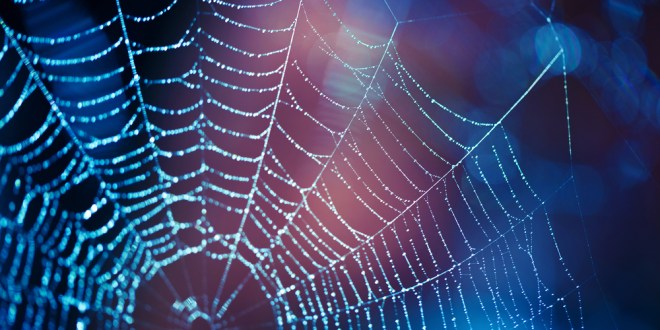 Catching a tumor in a spider's web: New technology platform exploits the power of protein aggregation to develop novel medicines | ScienceDaily