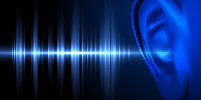 Drug treatment could combat hearing loss | ScienceDaily