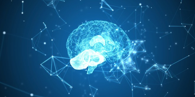 'Multi-dimensional universe' in brain networks | ScienceDaily