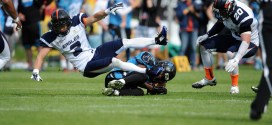 Most football players who donated their brains to science had traumatic injury | Science News