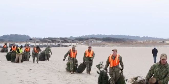 The Navy base where SEALs train is being protected by Christmas trees | Pilot Online