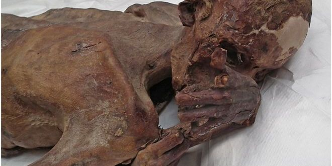 'Oldest tattoo' found on 5,000-year-old Egyptian mummies | BBC News