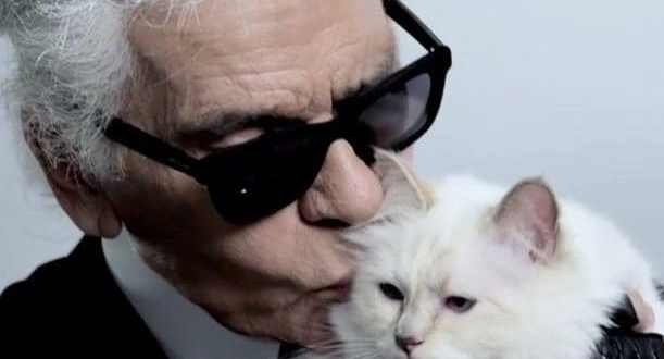 How Karl Lagerfeld's Choupette became the world's most famous – and possibly wealthiest – cat | Telegraph