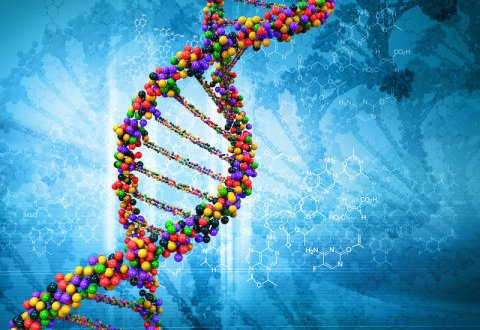 New causes of autism found in 'junk' DNA | Science Daily