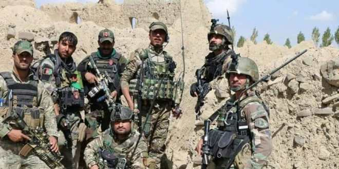 Special Forces kill, detain 5 Taliban militants in Kabul and Faryab | Khaama Press News Agency