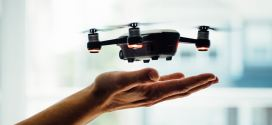 A drone's-eye view of the quick and the dead | Scientific American
