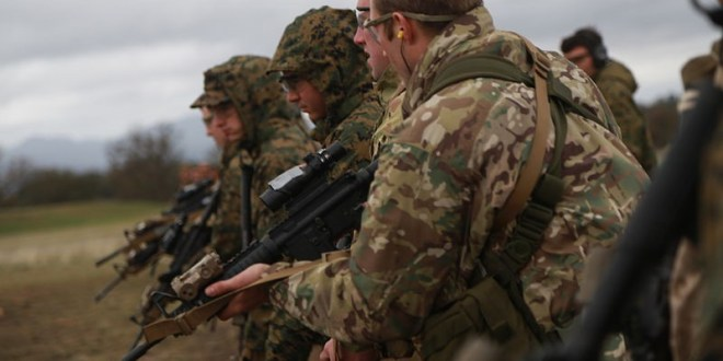 British Royal Marines conclude training in Belarus | Naval Technology