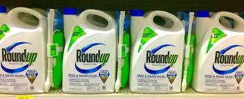 Bayer To Pay More Than $10 Billion To Resolve Cancer Lawsuits Over Weedkiller Roundup | NPR News