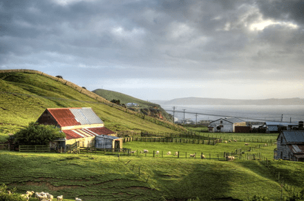 New Zealand's Chatham Islands might be the only place in the world experiencing overtourism right now | CNN Travel