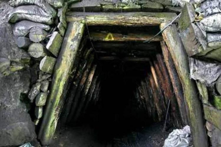 mina_carbon