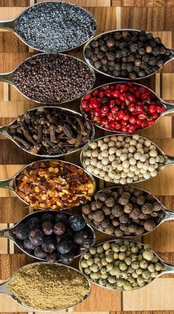 Logistica alimentare prodotti bio spezie