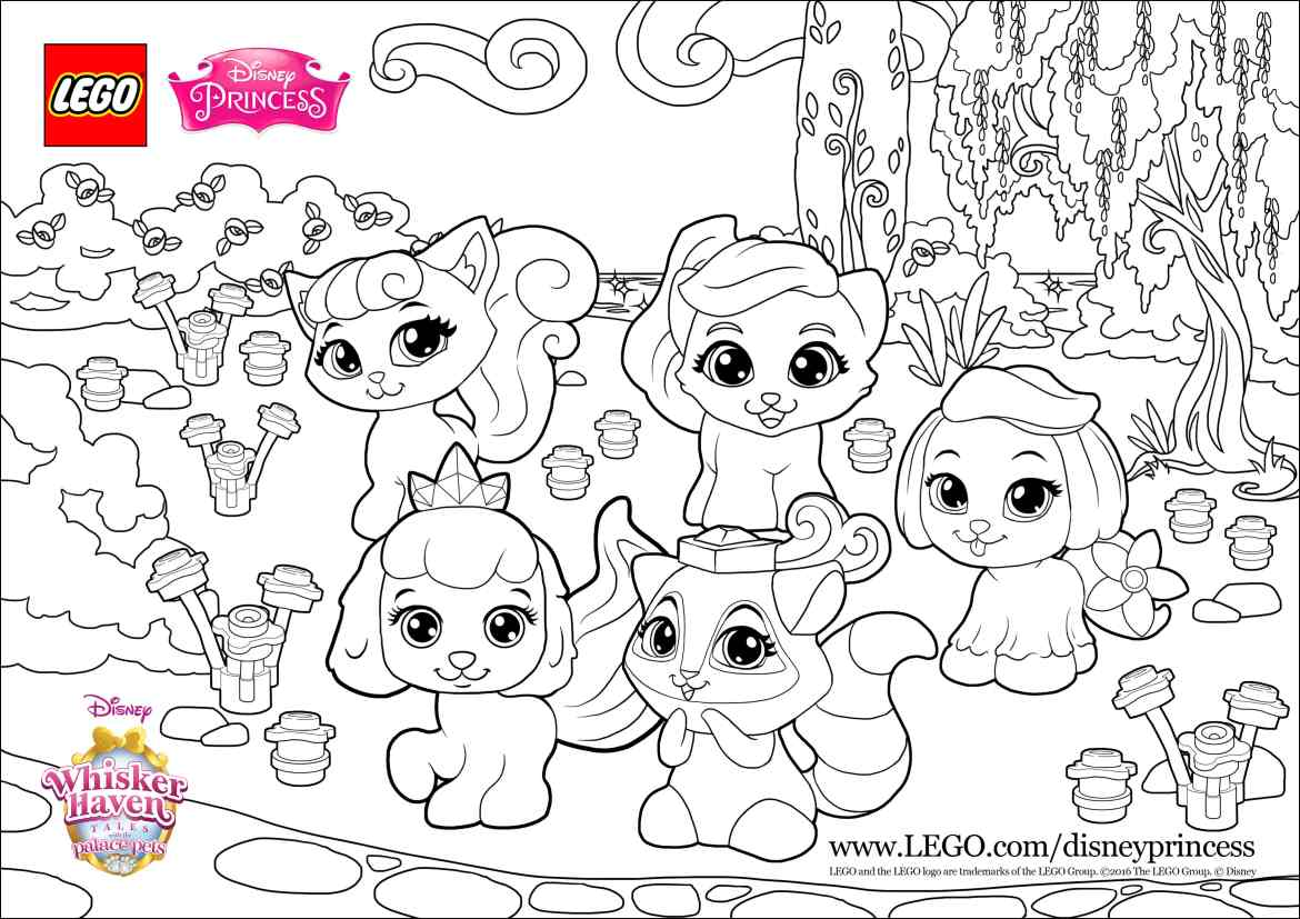 Colorfun with the Palace Pets
