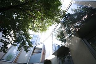 【募集終了】中目黒でペットと一緒に桜を眺めるSOHO空間