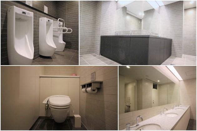 kojimachiparkhouse_toilet_sohotokyo