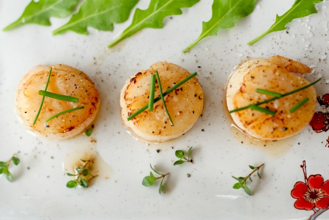scallops-1-of-1