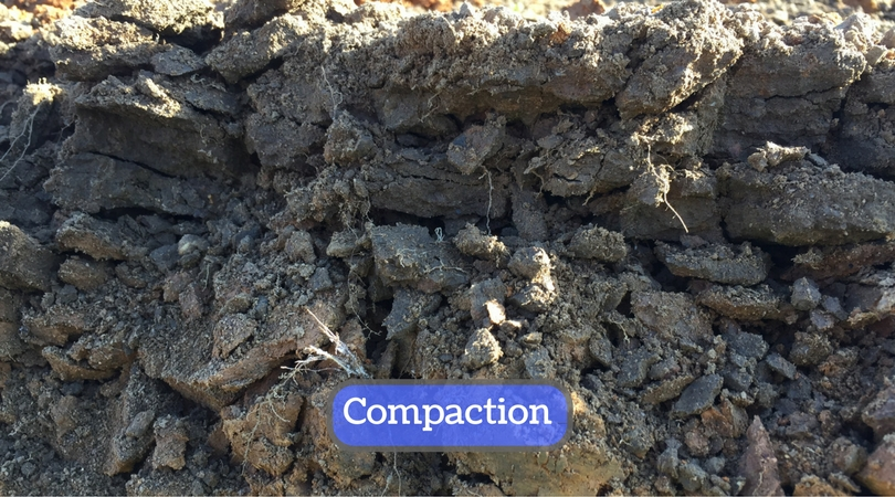 surface-soil-compaction