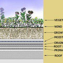 Schematic Diagram Of Matter 2002 Toyota Corolla Belt Green Roofs | Soil Science Society America