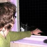 Praticienne énergétique sur chats - Soins énergétiques Alsace