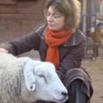 Soins sur animaux de la ferme | Soins énergétiques Alsace