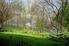 wordless wednesday rainbow