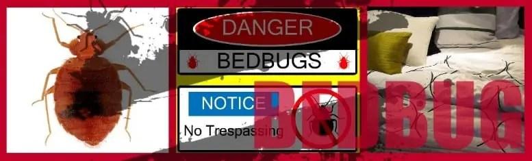 SOKKS Bed Bug K9 Detection Training Aids