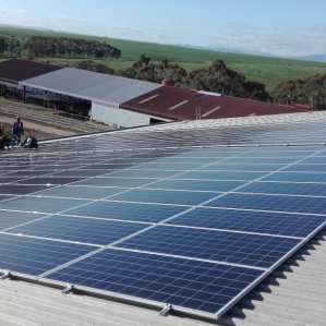 Fair Cape Dairies solar PPA with SOLA Future Energy